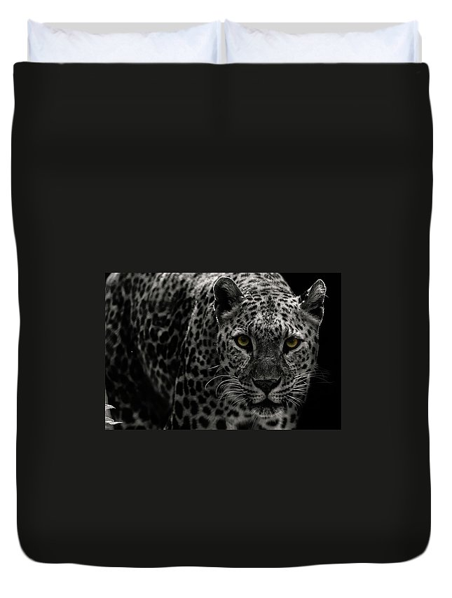 Big Cat Duvet Cover featuring the photograph Leopard by Somak Pal