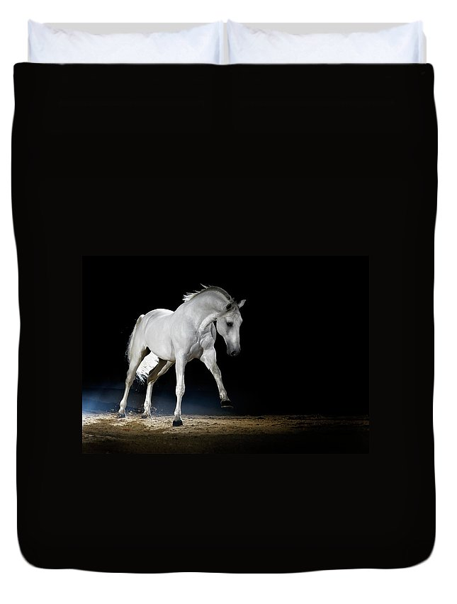 Horse Duvet Cover featuring the photograph Lipizzaner Horse Playing by Somogyvari