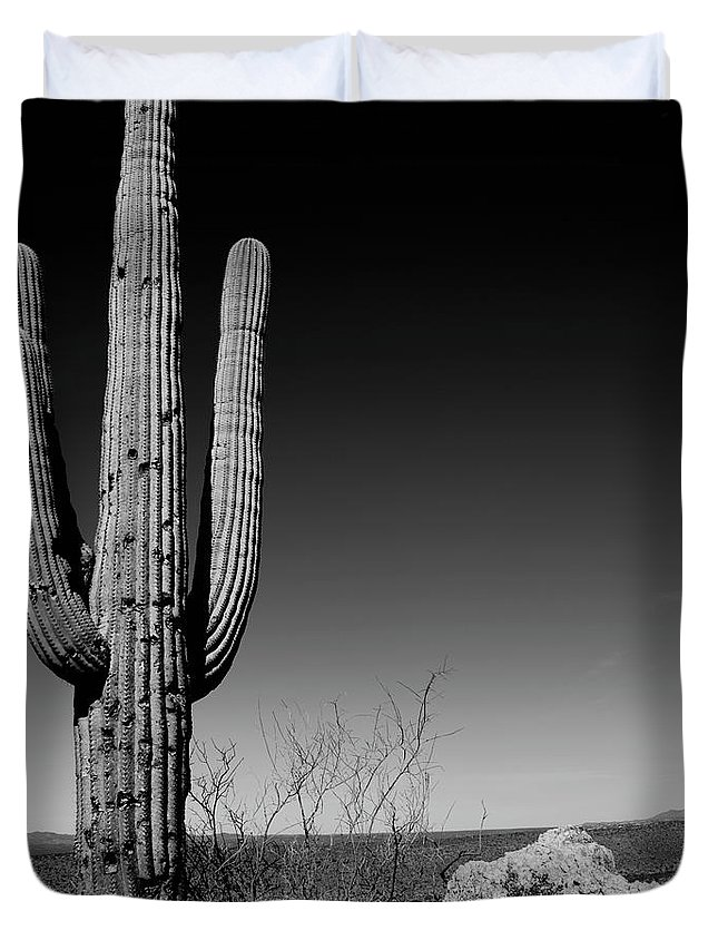 Lone Duvet Cover featuring the photograph Lone Saguaro Square by Chad Dutson