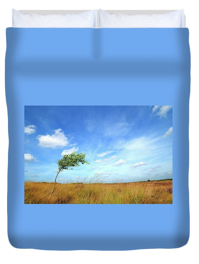 Scenics Duvet Cover featuring the photograph Lonesome Tree Swept By The Wind by Nikitje