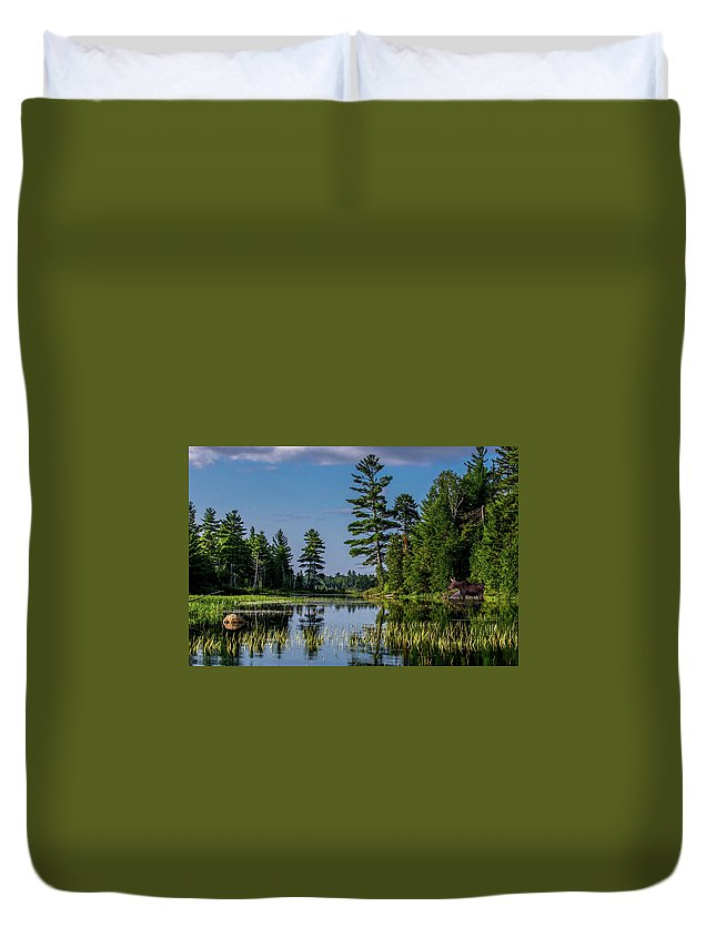 Moose Duvet Cover featuring the photograph Lunch At Seboeis by Brent L Ander