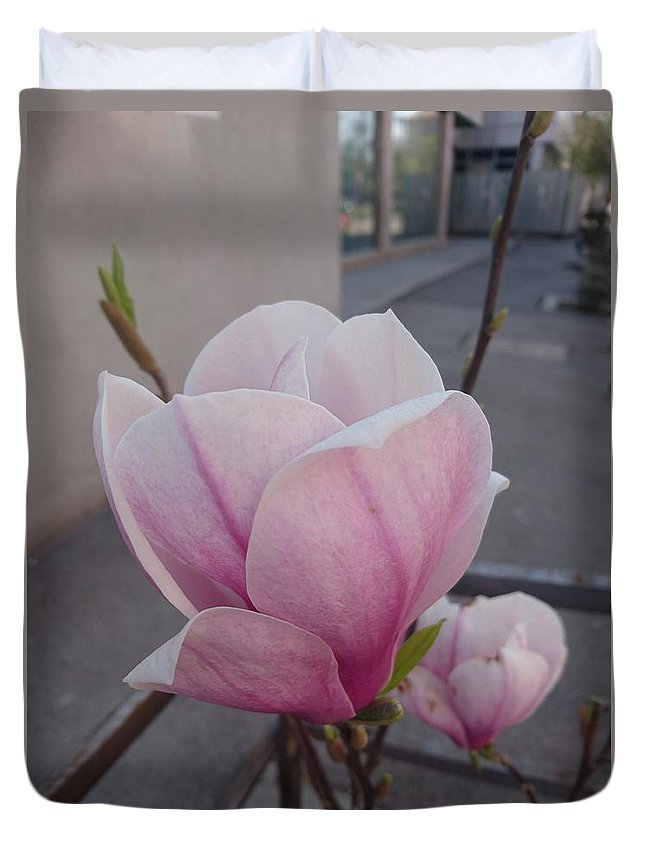 Duvet Cover featuring the photograph Magnolia by Anzhelina Georgieva