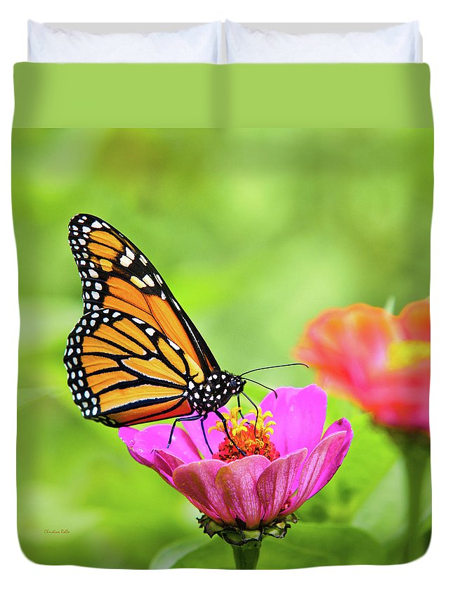 Monarch Butterfly Duvet Cover featuring the photograph Monarch Butterfly Square by Christina Rollo