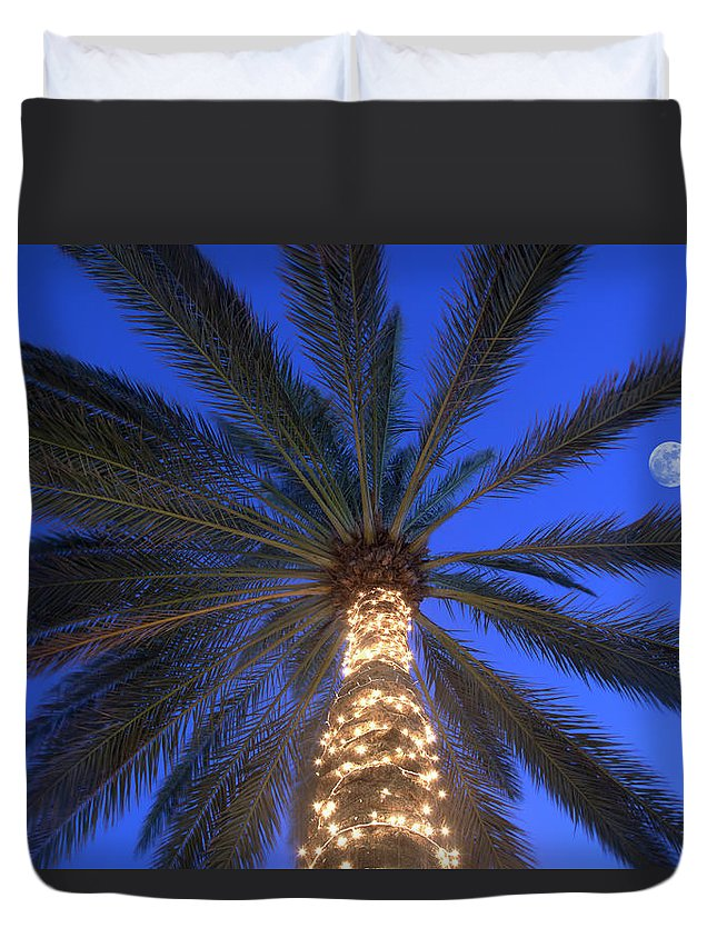 Tranquility Duvet Cover featuring the photograph Moonrise Near Lit-up Palm Tree by Grant Faint