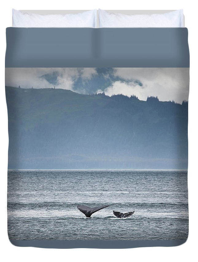 Water's Edge Duvet Cover featuring the photograph Mother And Calf Whale Tails Megaptera by Blake Kent / Design Pics