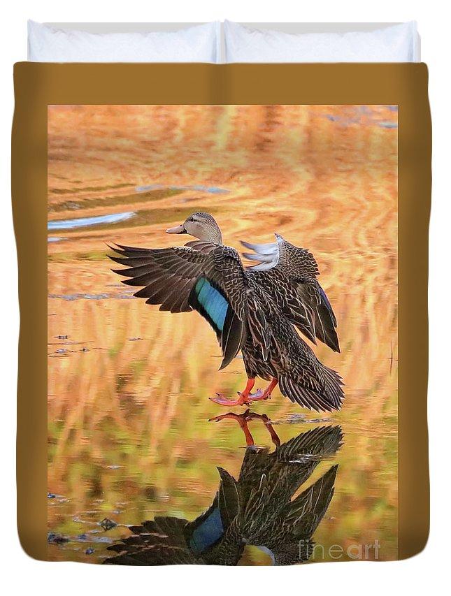 Duck Duvet Cover featuring the photograph Mottled Duck Landing On Golden Pond by Carol Groenen