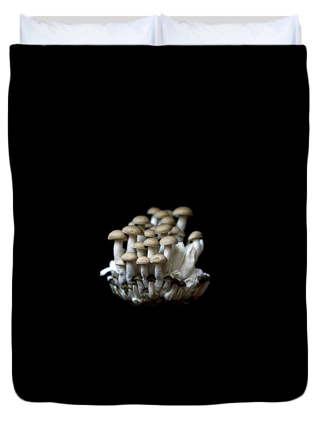 Edible Mushroom Duvet Cover featuring the photograph Mushoom Against Black Background by Zachary Rathore