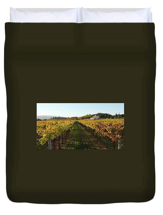 Scenics Duvet Cover featuring the photograph Napa Valley Vineyard In Autumn by Leezsnow