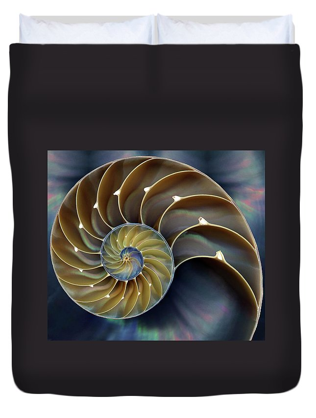 Cephalopod Duvet Cover featuring the photograph Nautilus by 0049-1215-16-2610334597