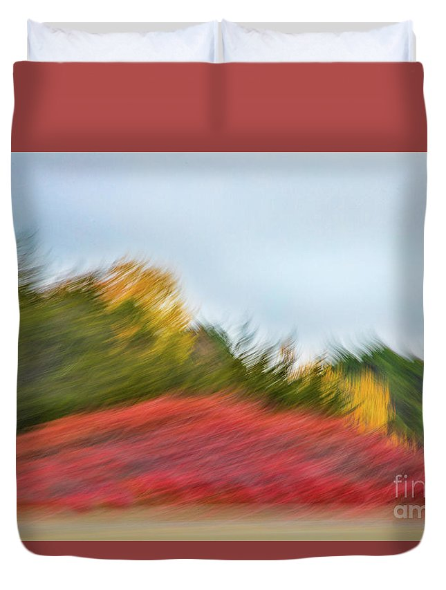 Abstracts Duvet Cover featuring the photograph November Howls the Landscape Down by Marilyn Cornwell
