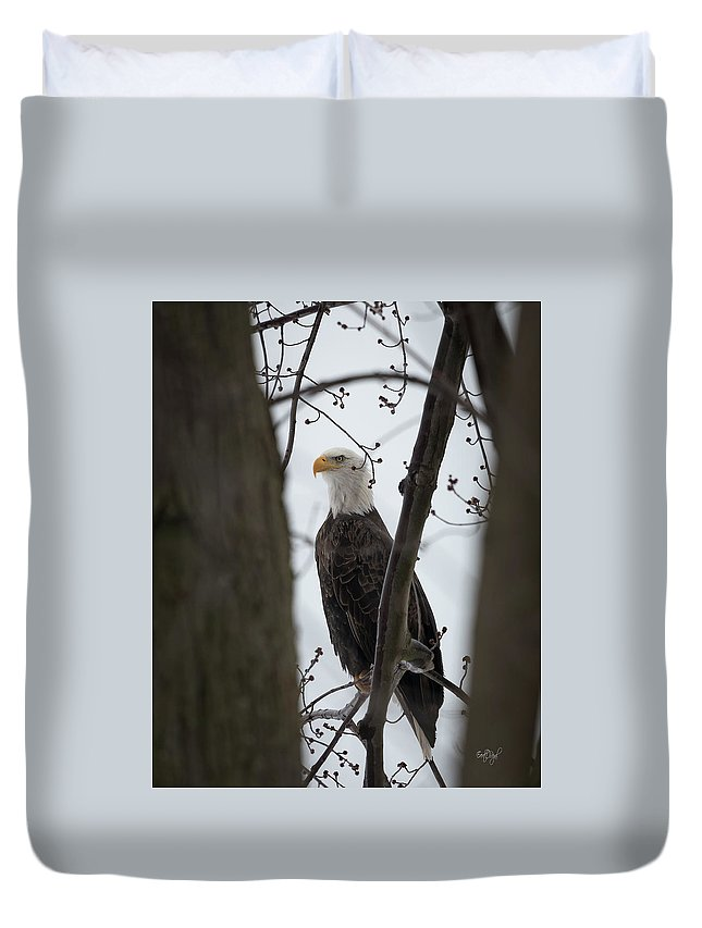Bald Duvet Cover featuring the photograph On Morning Watch by Everet Regal