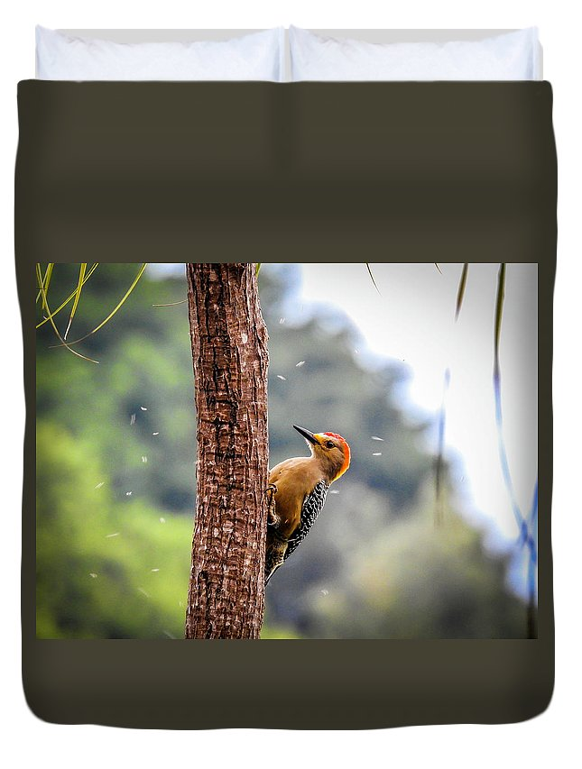 Woodpecker Duvet Cover featuring the photograph Orange Headed Woodpecker by Matias Feucht