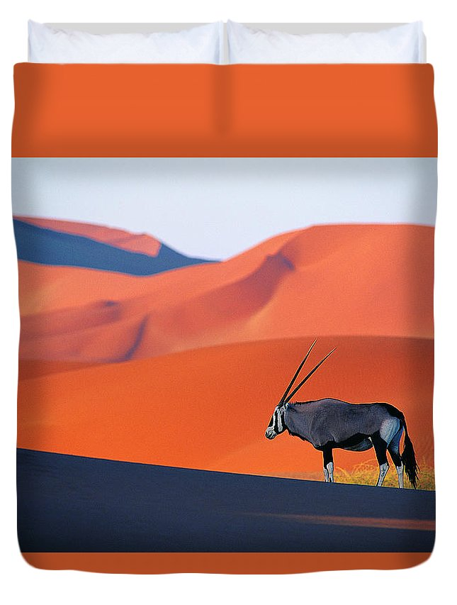 Scenics Duvet Cover featuring the photograph Oryx Antelope by Natphotos