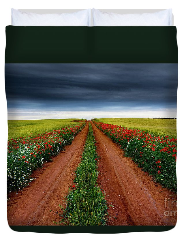 Nature Duvet Cover featuring the photograph Path Between Fields by Vicente Sargues