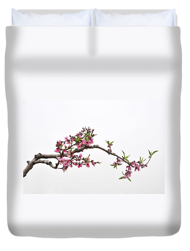 Season Duvet Cover featuring the photograph Peach by Sdlgzps
