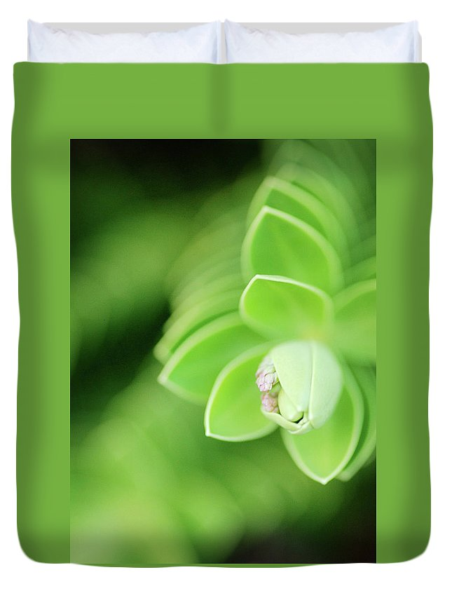 Outdoors Duvet Cover featuring the photograph Peek by Natalia Campbell Of Nc Photography