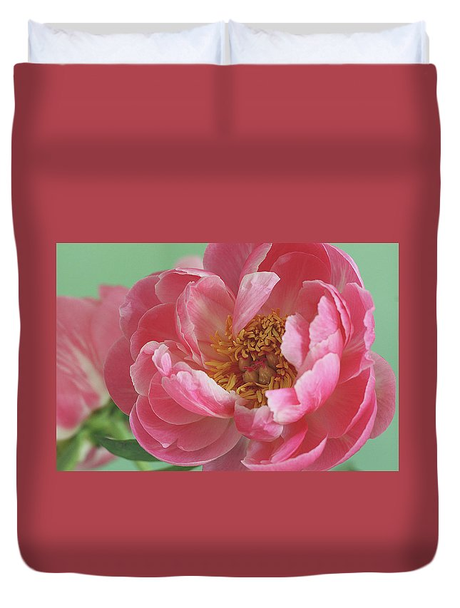 California Duvet Cover featuring the photograph Peony by © 2011 Staci Kennelly
