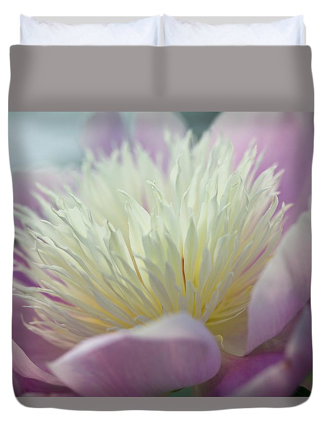 Toronto Duvet Cover featuring the photograph Pink And White Peony by Lynda Murtha