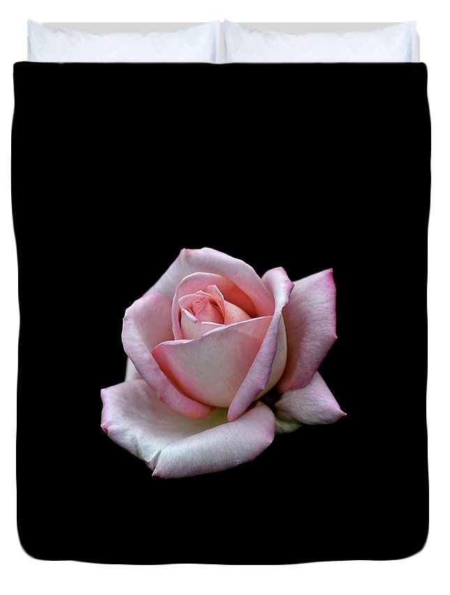 Part Of A Series Duvet Cover featuring the photograph Pink Rose by I Love Photo And Apple.
