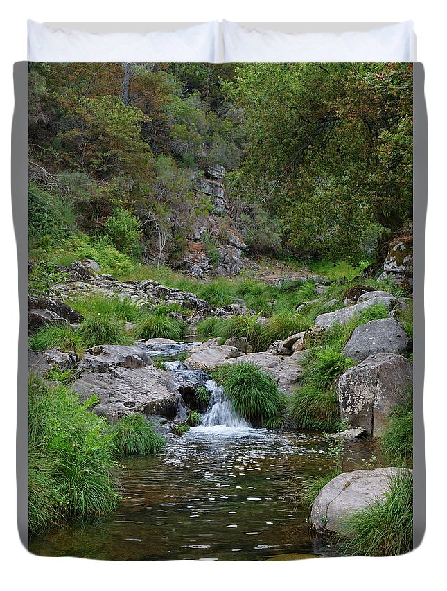 Poco Negro Duvet Cover featuring the photograph Poco Negro River In Carvalhais by Angelo DeVal