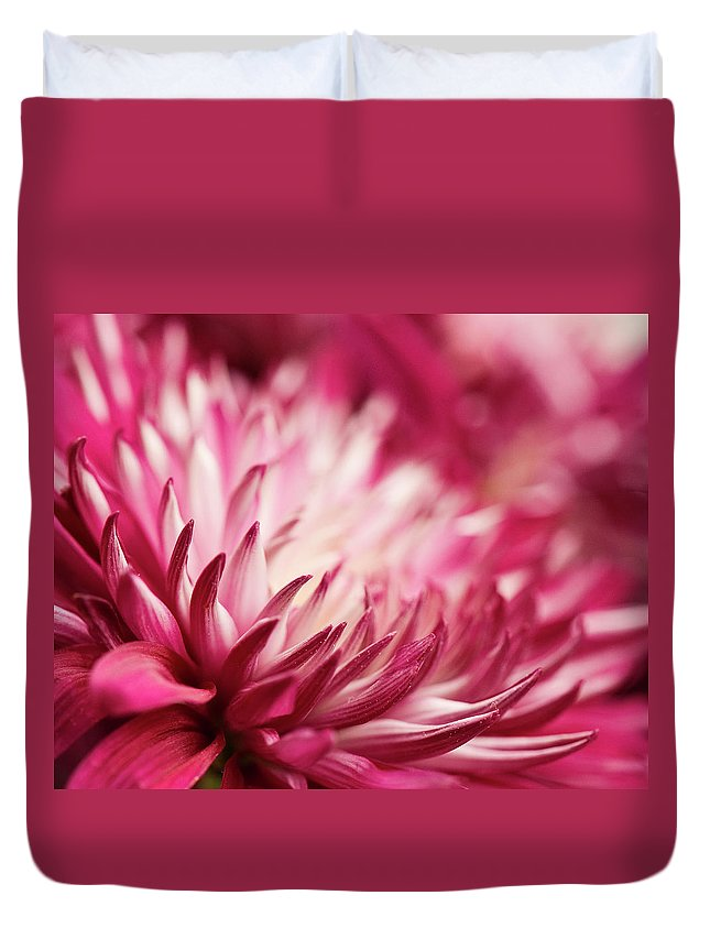 Petal Duvet Cover featuring the photograph Poised Petals by Jody Trappe Photography
