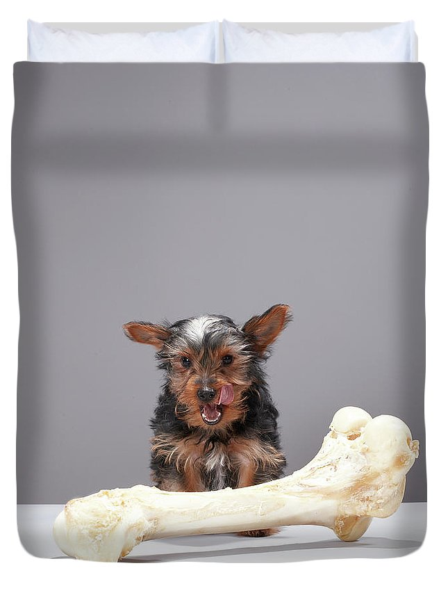 Pets Duvet Cover featuring the photograph Puppy With Oversized Bone by Martin Poole