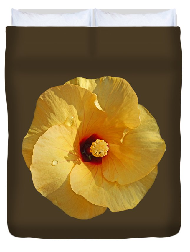 Yellow Hibiscus Bloom Duvet Cover featuring the photograph Rain and Shine by Charles Stuart