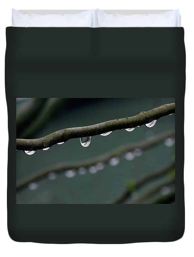 Windsor Duvet Cover featuring the photograph Rain Branch by Photography By Gordana Adamovic Mladenovic