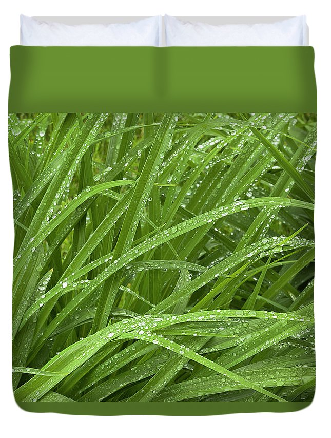 Tranquility Duvet Cover featuring the photograph Raindrops Of Daylily Foliage by Adam Jones