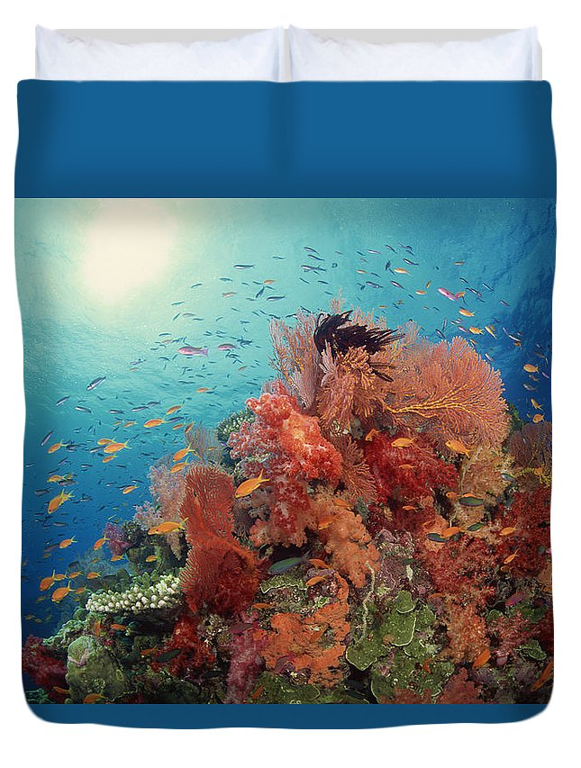 Underwater Duvet Cover featuring the photograph Reef Scenic Of Hard Corals , Soft by Comstock
