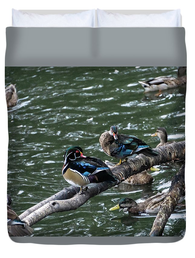 Outdoors Photographs Duvet Covers