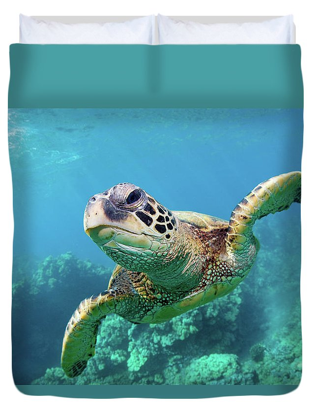 Underwater Duvet Cover featuring the photograph Sea Turtle, Hawaii by M Swiet Productions
