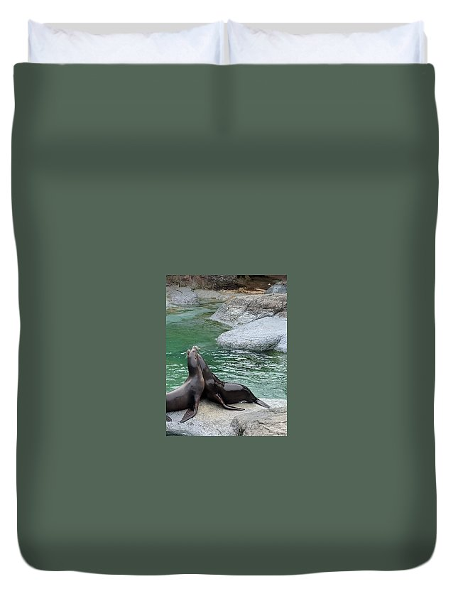 Rock Duvet Covers