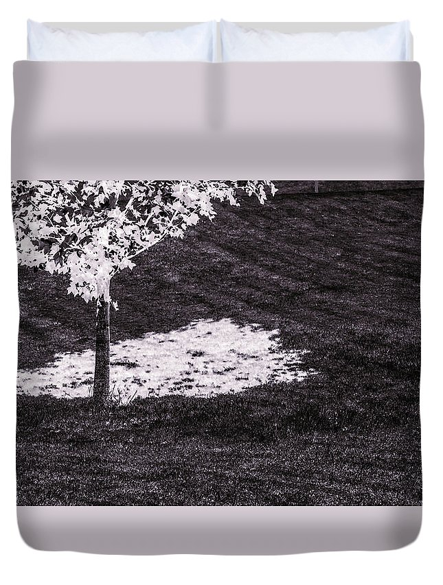 Tree Duvet Cover featuring the photograph Shade Of Tree 4th by Hyuntae Kim