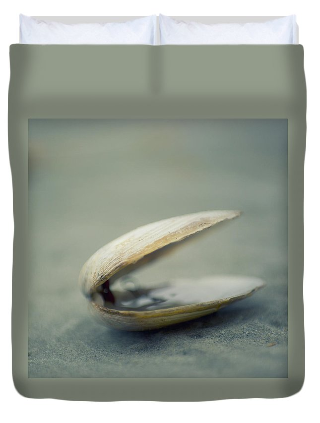 Animal Shell Duvet Cover featuring the photograph Shell by Jill Ferry Photography