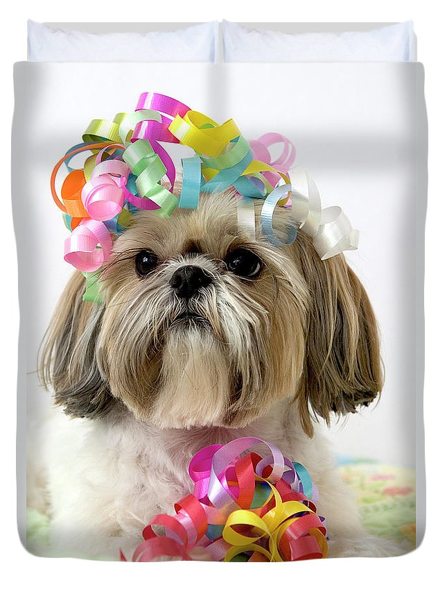 Pets Duvet Cover featuring the photograph Shih Tzu Dog by Geri Lavrov