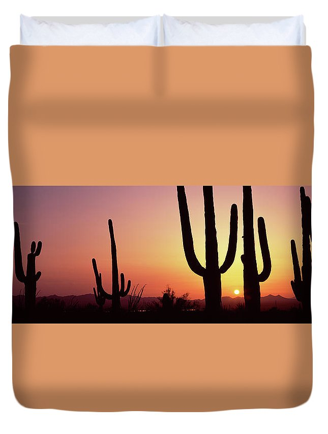 Photography Duvet Cover featuring the photograph Silhouette Of Saguaro Cacti Carnegiea by Panoramic Images