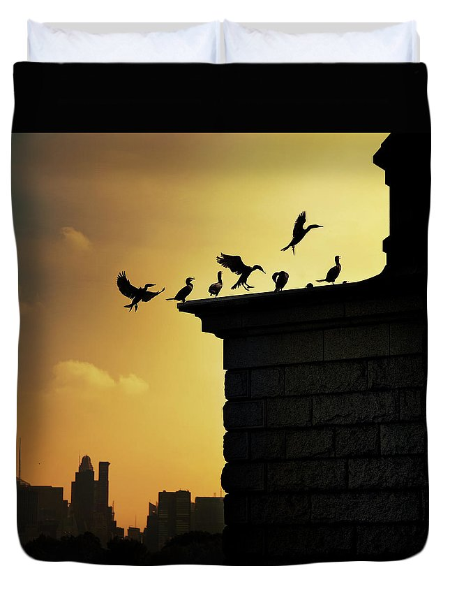 Central Park Duvet Cover featuring the photograph Silhouettes Of Cormorants by Istvan Kadar Photography