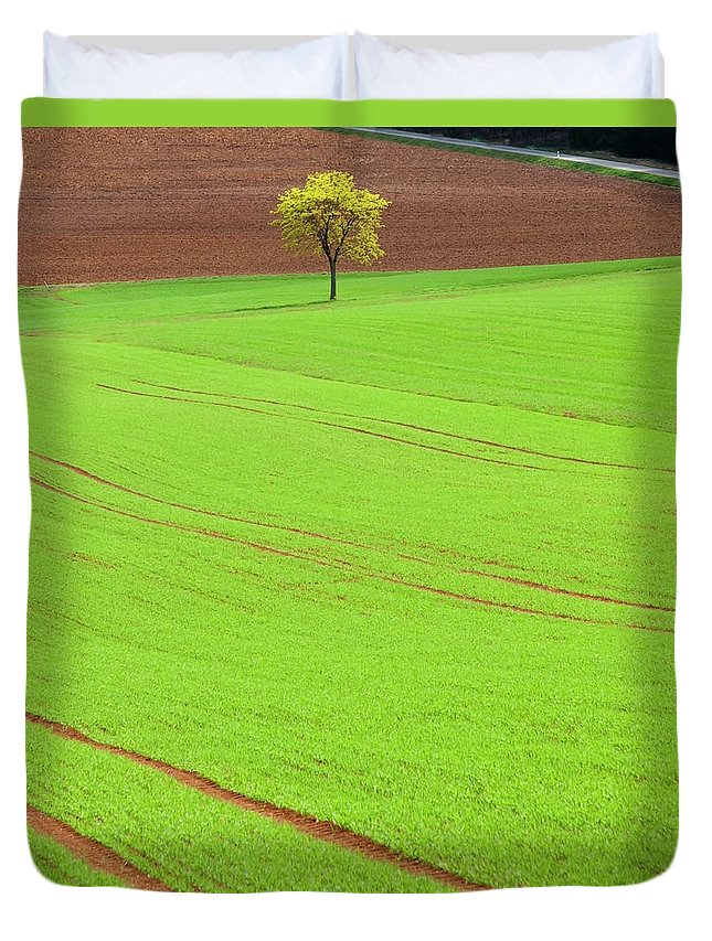 Outdoors Duvet Cover featuring the photograph Single Tree In Green Field by Henglein And Steets
