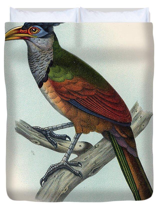Cuculiformes Duvet Covers