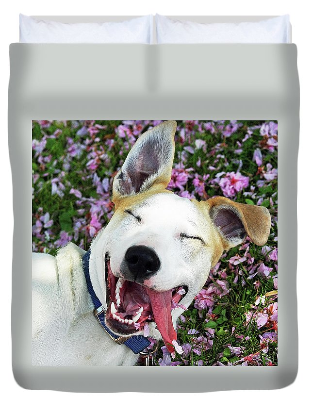 Pets Duvet Cover featuring the photograph Smiling Dog by Fork