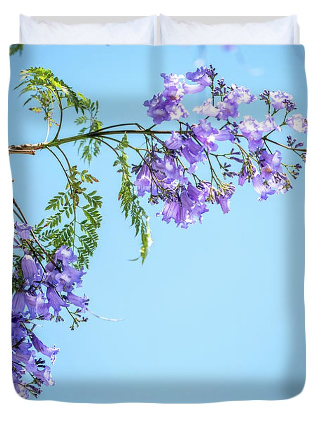 Jacaranda Tree Duvet Cover featuring the photograph Springtime Beauty by Az Jackson