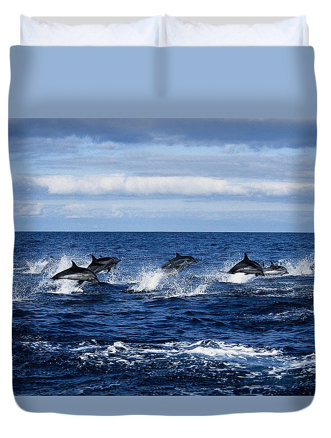 Spray Duvet Cover featuring the photograph Striped Dolphin,stenella Coeruleoalba by Gerard Soury
