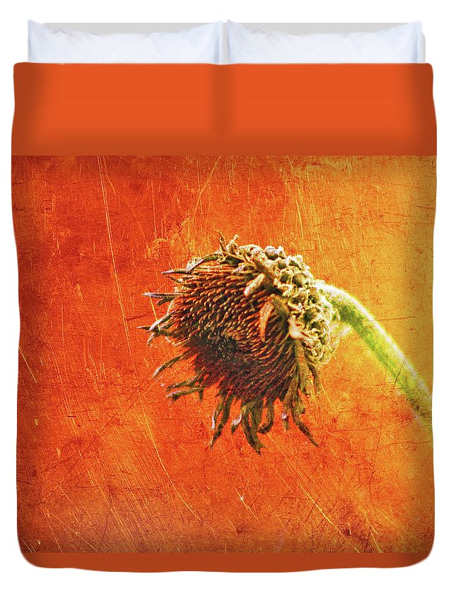 Summers Past Duvet Cover featuring the photograph Summers Past by Linda Sannuti