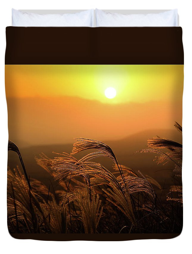 Tranquility Duvet Cover featuring the photograph Sunset, Reeds And Wind by Douglas Macdonald