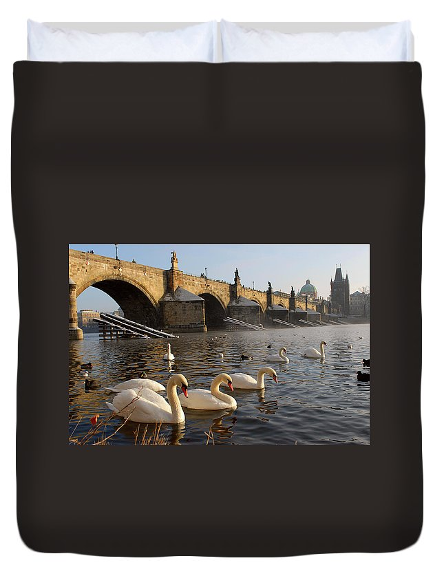 Arch Duvet Cover featuring the photograph Swans And Charles Bridge by Dibrova