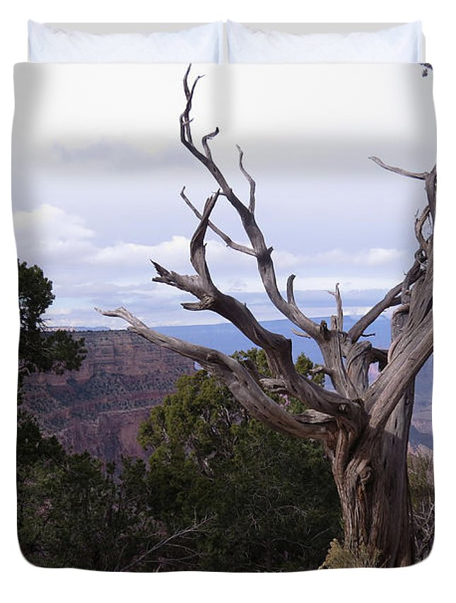 Twisted Duvet Cover featuring the photograph Swirly Tree by Mary Mikawoz