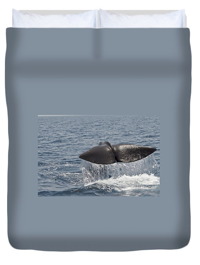 Spray Duvet Cover featuring the photograph Tail Of A Whale by Lingbeek