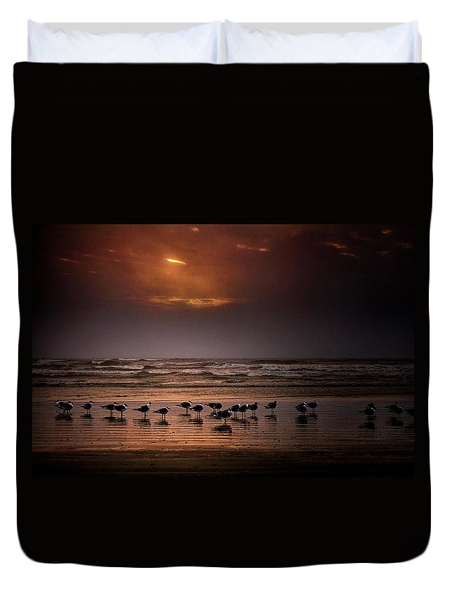 Water's Edge Duvet Cover featuring the photograph Theres Gotta Be Food Around Here by Dean Fikar