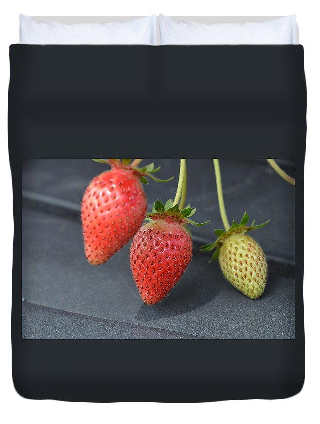 Strawberries Duvet Cover featuring the photograph Three Strawberries by Norman Burnham